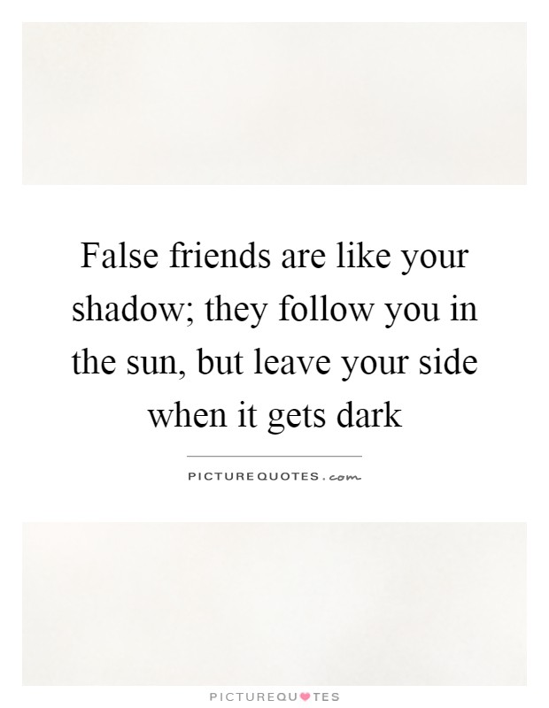 False friends are like your shadow; they follow you in the sun, but leave your side when it gets dark Picture Quote #1