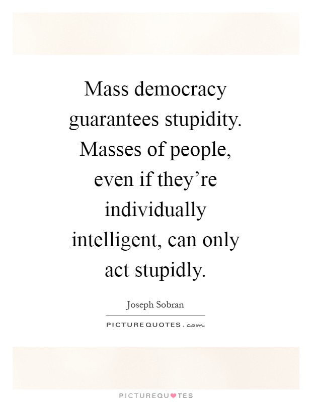 mass democracy Democracy is a system of rule by laws, not by individuals in a democracy, the rule of law protects the rights of citizens, maintains order, and limits the power of government all citizens are equal under the law.