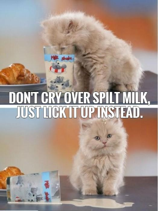 Don T Cry Over Spilt Milk Quotes: Don't Cry Over Spilt Milk, Just Lick It Up Instead
