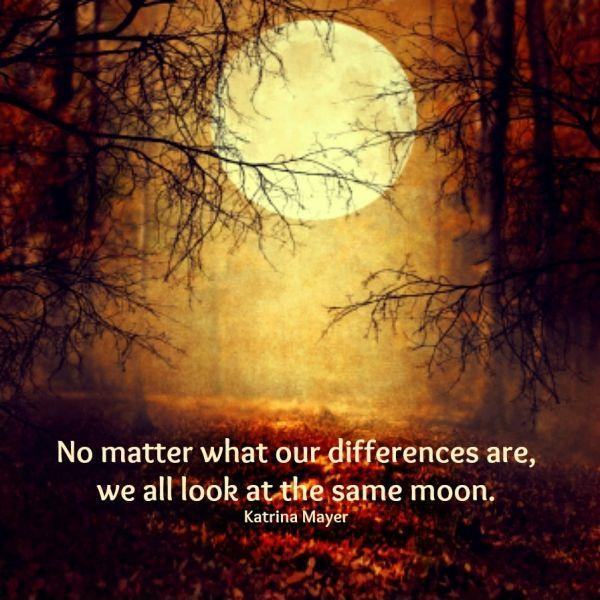 No matter what our differences are, we all look at the same moon  Picture Quote #1