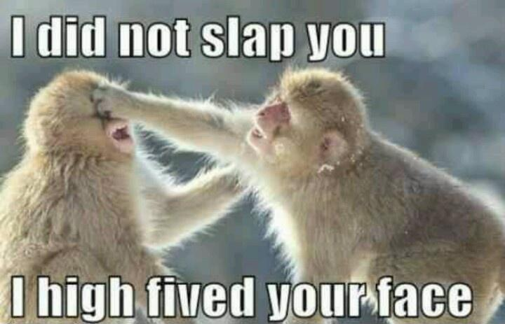 I did not slap you, I high fived your face Picture Quote #1
