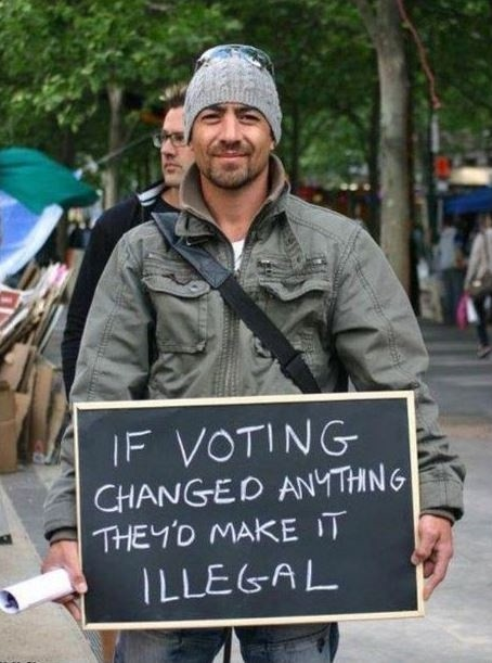 If voting changed anything, they'd make it illegal Picture Quote #2