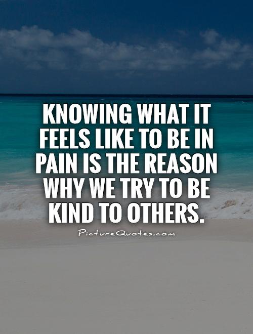 Knowing what it feels like to be in pain is the reason why we try to be kind to others Picture Quote #1