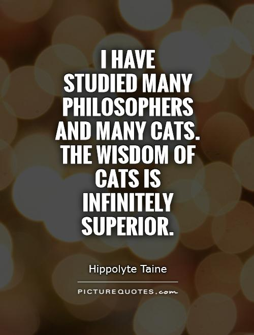 I have  studied many philosophers  and many cats.  The wisdom of  cats is  infinitely superior Picture Quote #1