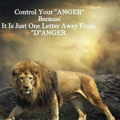 Control your anger because it is just one letter away from danger Picture Quote #1