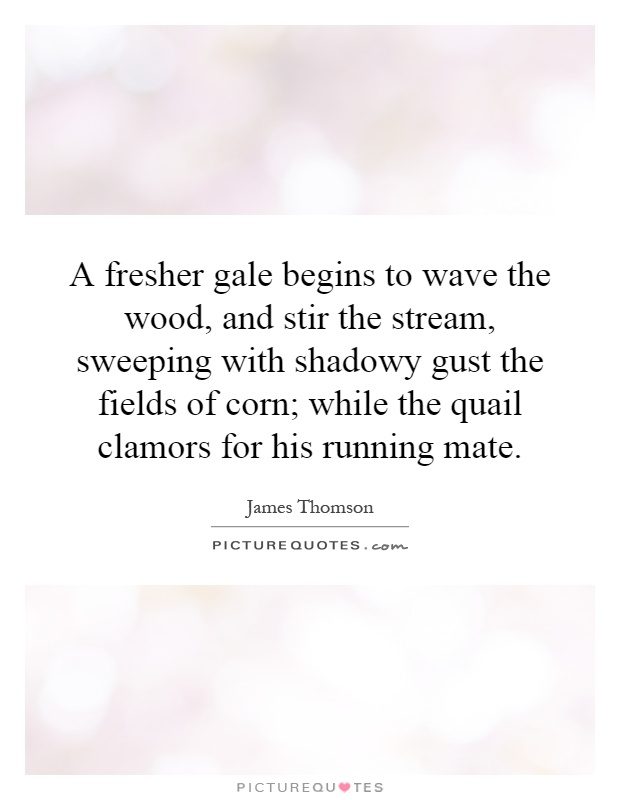 A fresher gale begins to wave the wood, and stir the stream, sweeping with shadowy gust the fields of corn; while the quail clamors for his running mate Picture Quote #1