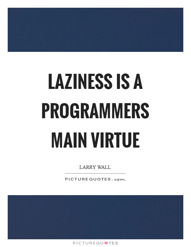 Laziness is a programmers main virtue Picture Quote #1