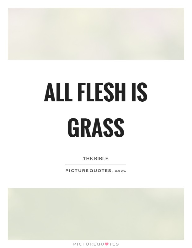 All flesh is grass Picture Quote #1