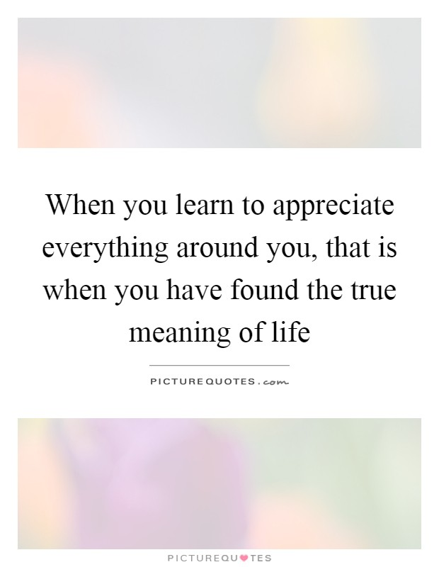 When you learn to appreciate everything around you, that is when you have found the true meaning of life Picture Quote #1