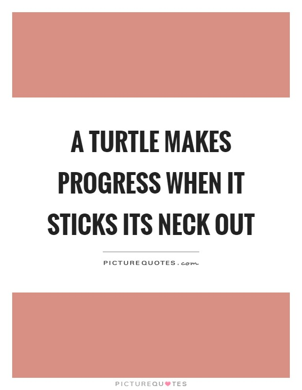 Turtle Quotes Turtle Sayings Turtle Picture Quotes