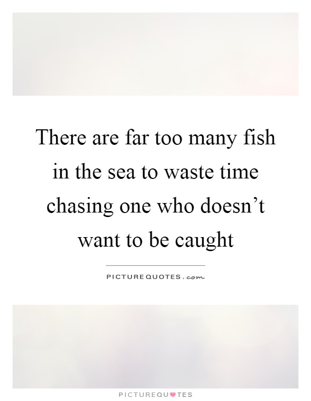 There are far too many fish in the sea to waste time chasing one who doesn't want to be caught Picture Quote #1