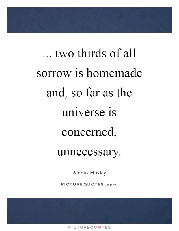 ... two thirds of all sorrow is homemade and, so far as the universe is concerned, unnecessary Picture Quote #1