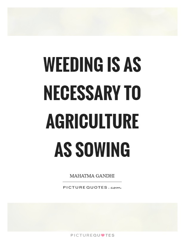 Weeding is as necessary to agriculture as sowing Picture Quote #1