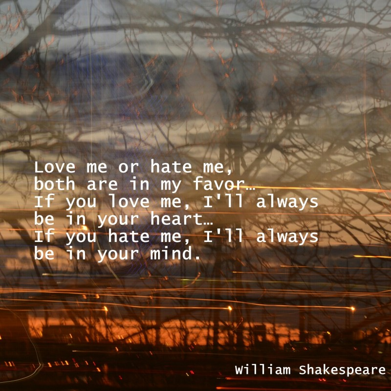 Hate Me Shakespeare Quote 1 Picture Quote #1