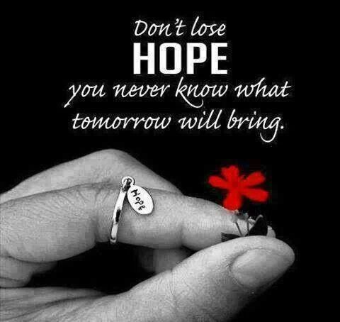 Dont Lose Hope Quote 3 Picture Quote #1