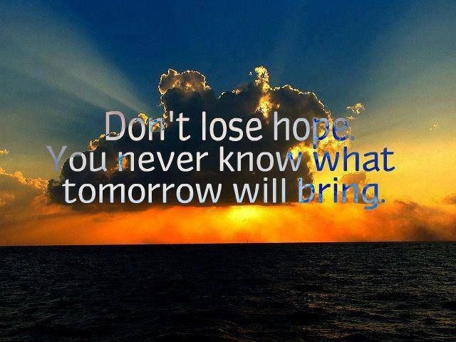Dont Lose Hope Quote 4 Picture Quote #1