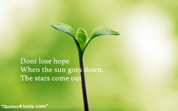 Dont Lose Hope Quote 5 Picture Quote #1
