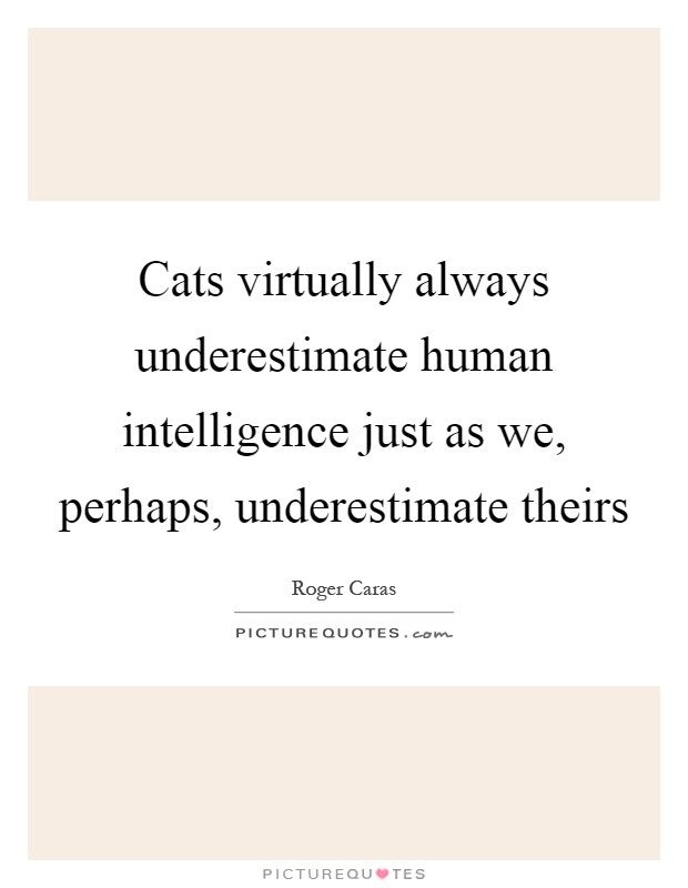 Cats virtually always underestimate human intelligence just as we, perhaps, underestimate theirs Picture Quote #1