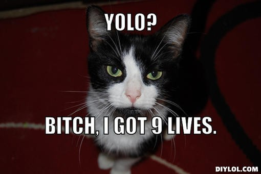 YOLO? Bitch, I got 9 lives Picture Quote #1