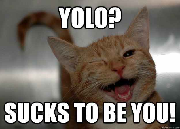 YOLO? Sucks to be you! Picture Quote #1