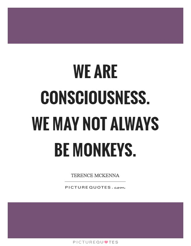 We are consciousness. We may not always be monkeys Picture Quote #1