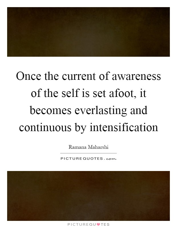 Once the current of awareness of the self is set afoot, it becomes everlasting and continuous by intensification Picture Quote #1