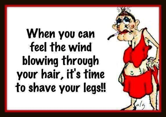 Funny Hair Quote 5 Picture Quote #1