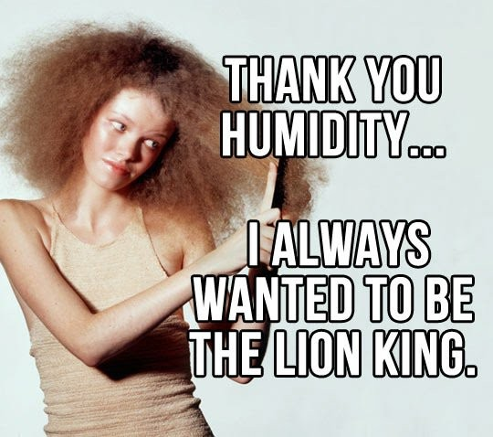 Funny Hair Quote 7 Picture Quote #1