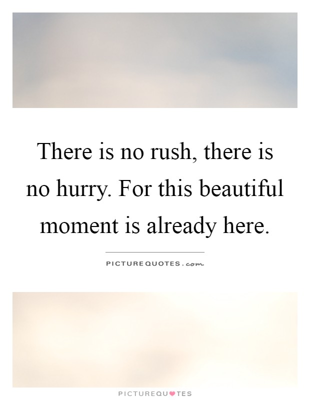 There is no rush, there is no hurry. For this beautiful moment is already here Picture Quote #1