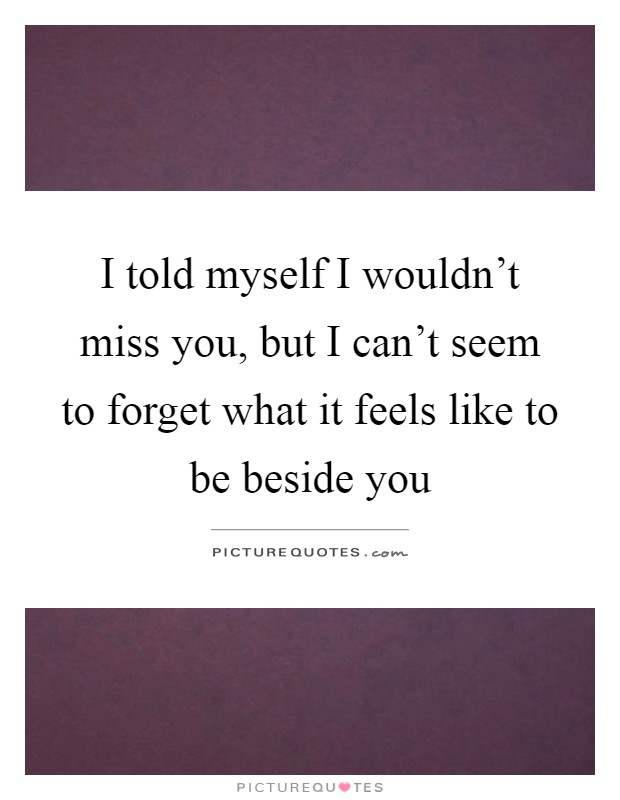 I told myself I wouldn't miss you, but I can't seem to forget what it feels like to be beside you Picture Quote #1