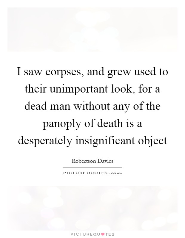 I saw corpses, and grew used to their unimportant look, for a dead man without any of the panoply of death is a desperately insignificant object Picture Quote #1