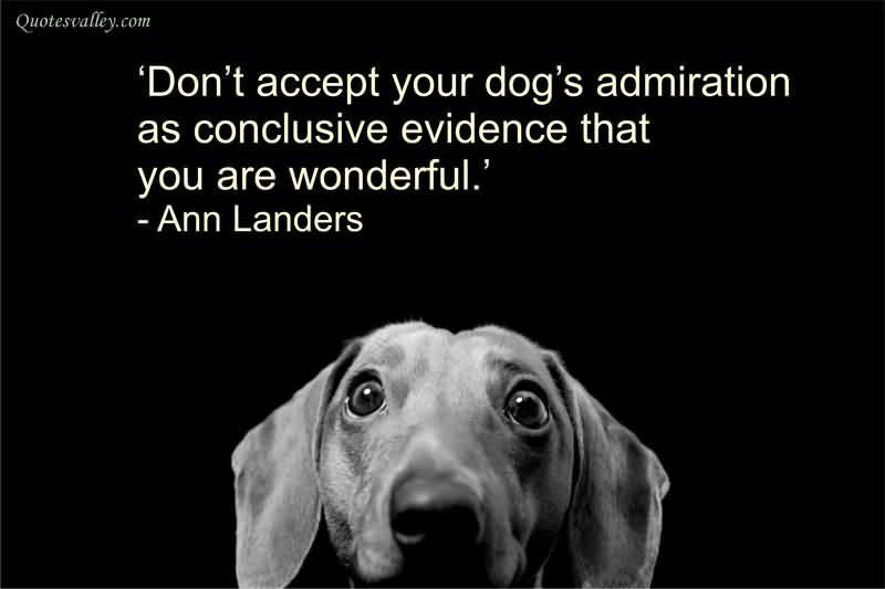 Admire Quote 11 Picture Quote #1