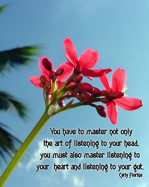 Listen To Your Heart Quote 8 Picture Quote #1