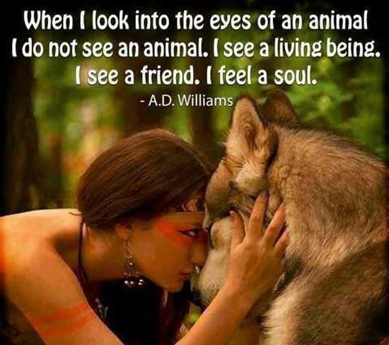 Animal Lover Quote 5 Picture Quote #1