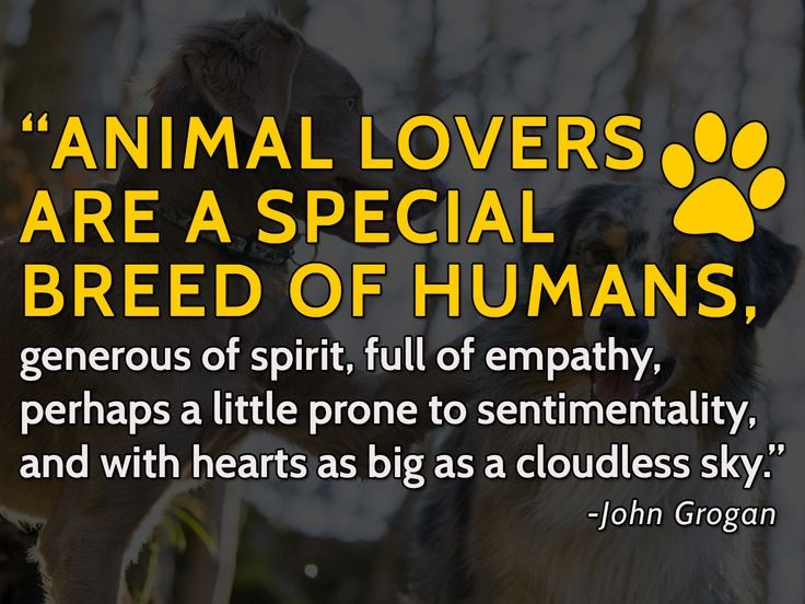 Animal Lover Quote 6 Picture Quote #1