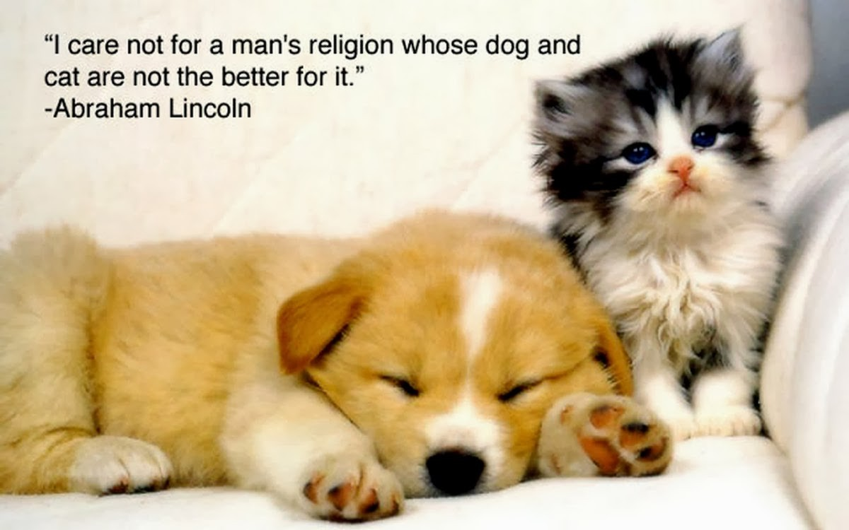 Animal Lover Quote 9 Picture Quote #1