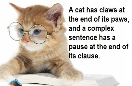 Grammar Quote 11 Picture Quote #1