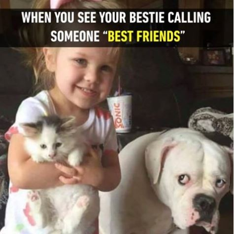 "When you see your bestie calling someone ""Best Friends"" Picture Quote #1"