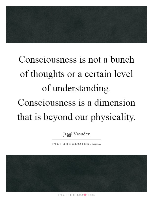 Consciousness is not a bunch of thoughts or a certain level of understanding. Consciousness is a dimension that is beyond our physicality Picture Quote #1