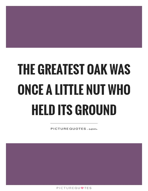 The greatest oak was once a little nut who held its ground Picture Quote #1