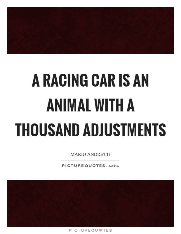 Race Car Quotes Unique Race Car Quotes  Race Car Sayings  Race Car Picture Quotes