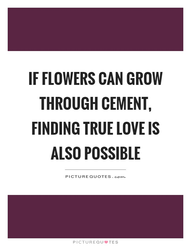 If flowers can grow through cement, finding true love is also possible Picture Quote #1
