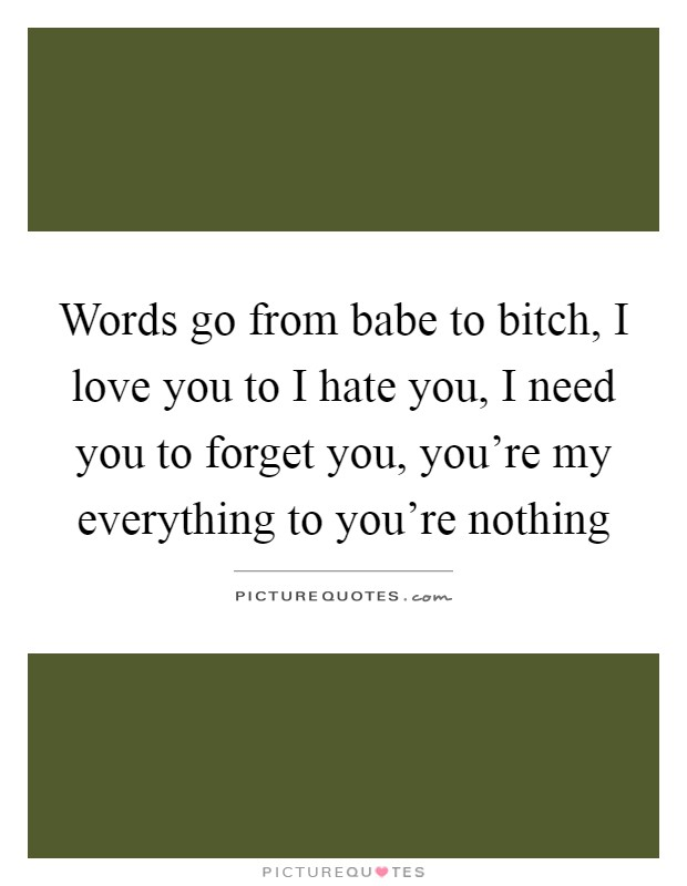 Words go from babe to bitch, I love you to I hate you, I need you to forget you, you're my everything to you're nothing Picture Quote #1