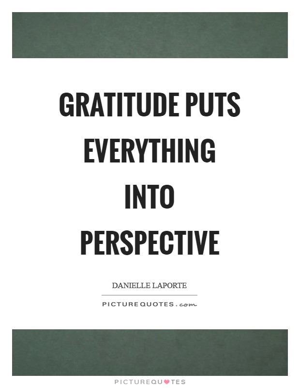 Gratitude puts everything into perspective Picture Quote #1