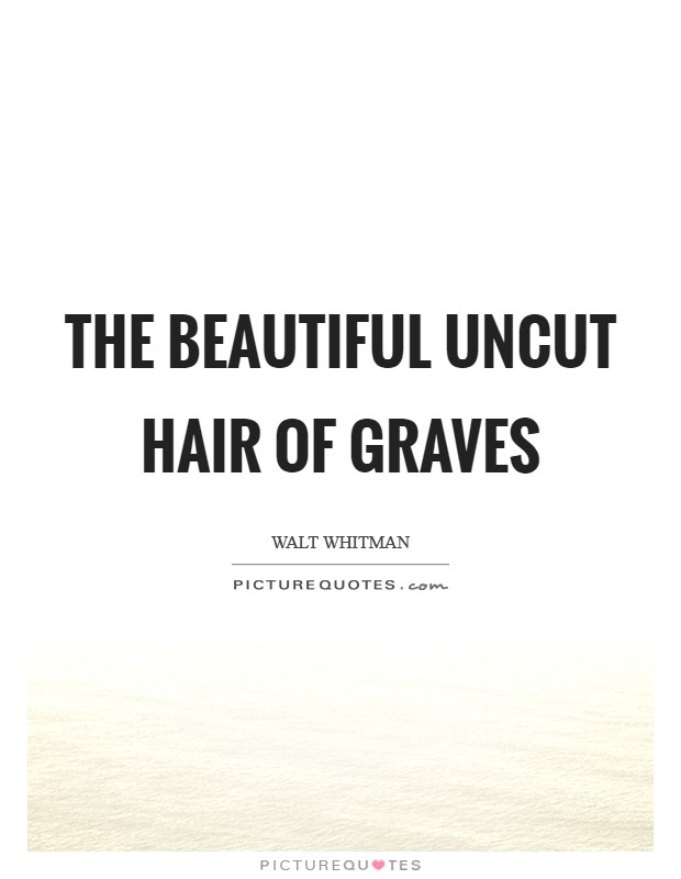 The beautiful uncut hair of graves Picture Quote #1