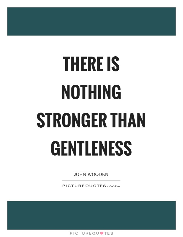 There is nothing stronger than gentleness Picture Quote #1