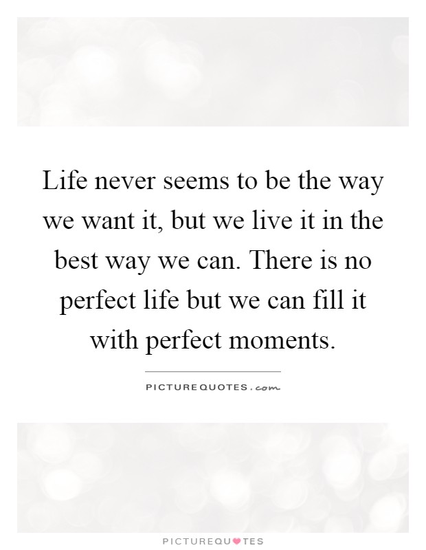 Life never seems to be the way we want it, but we live it in the best way we can. There is no perfect life but we can fill it with perfect moments Picture Quote #1