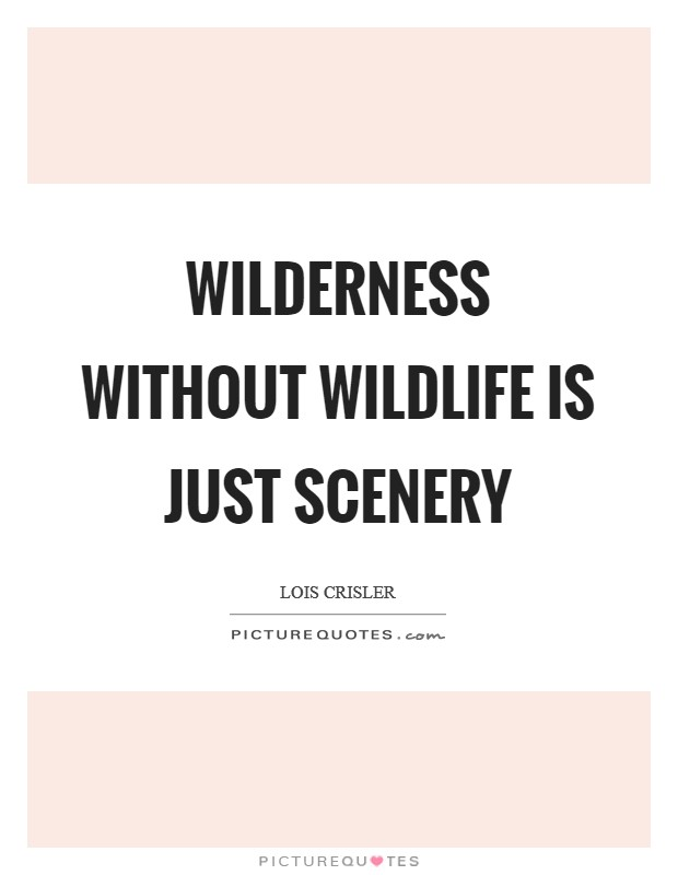 Wilderness without wildlife is just scenery Picture Quote #1