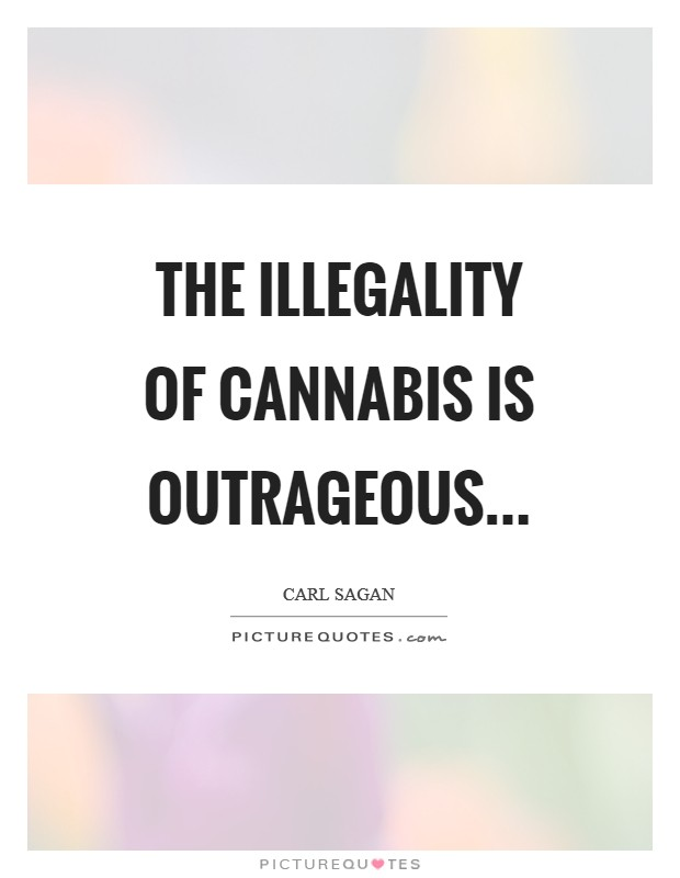 The illegality of cannabis is outrageous Picture Quote #1