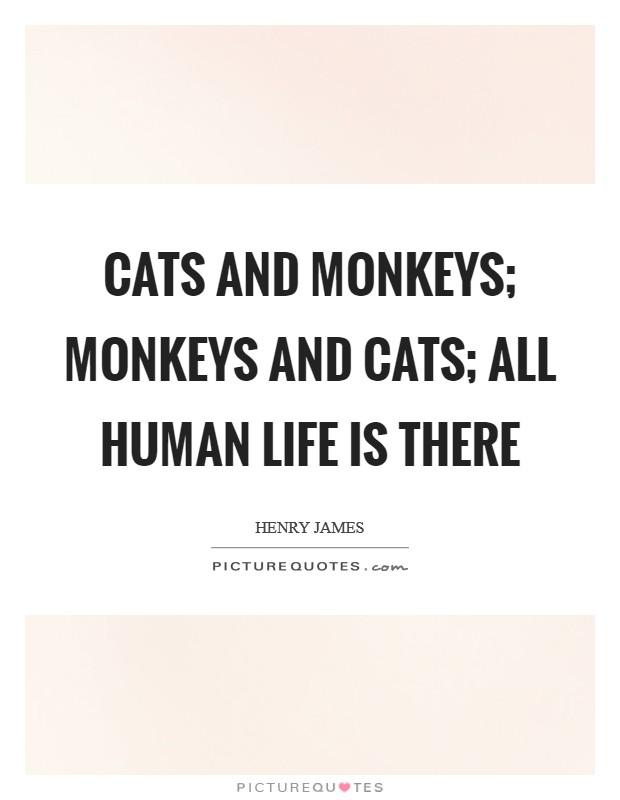 Cats and monkeys; monkeys and cats; all human life is there Picture Quote #1